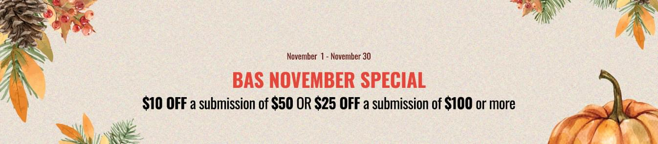 BAS November Special 2020 Banner